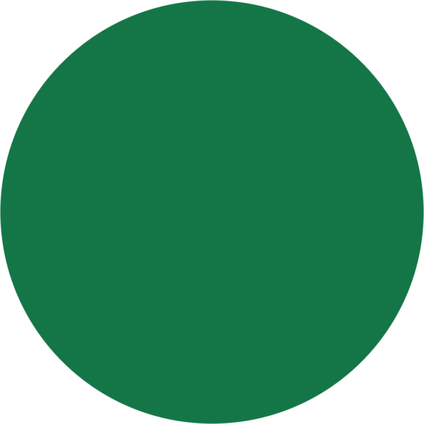 kayoCheck Circular Chemical Process Indicator for EO, Type 1 (Maroon to Green – Plain)