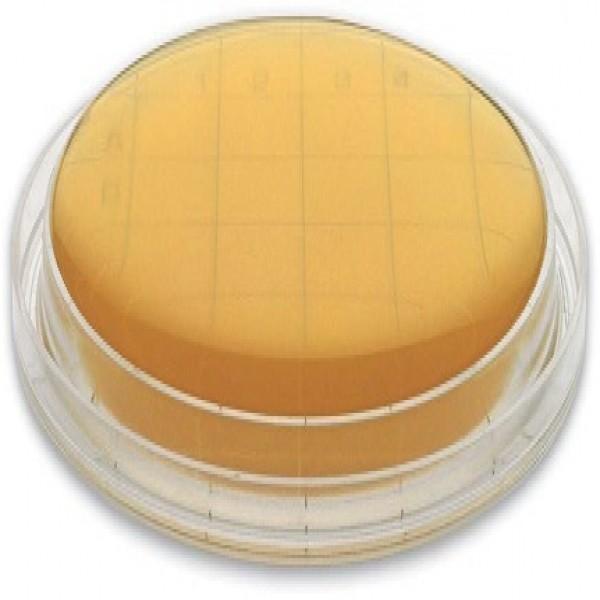 Soyabean Casein Digest Agar (SCDA) 55 mm contact plate