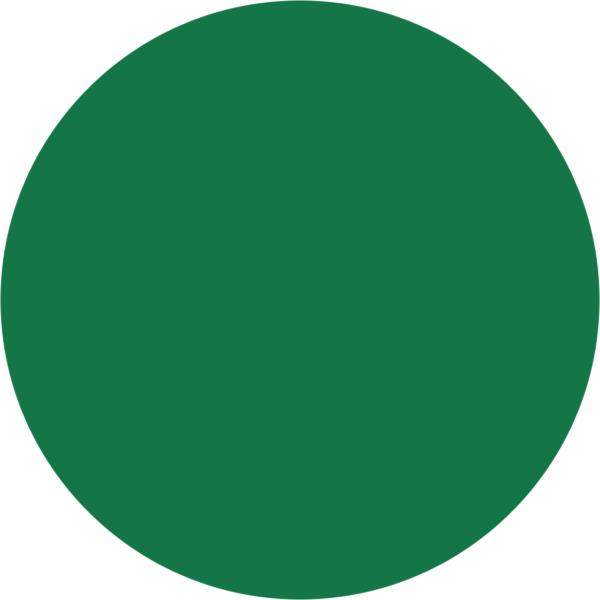 kayoCheck Circular Chemical Process Indicator for EO, Type 1 (Maroon to Green – Printed)