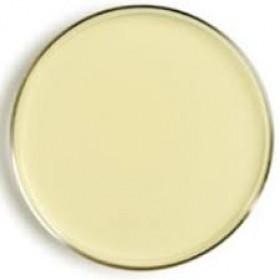 Bar Coded Soyabean Casein Digest Agar With 0.5% Lecithin & 2% Polysorbate 80 & 1% Glycerol(Gamma Irradiated)